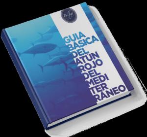 Covers_guia_basica_esp