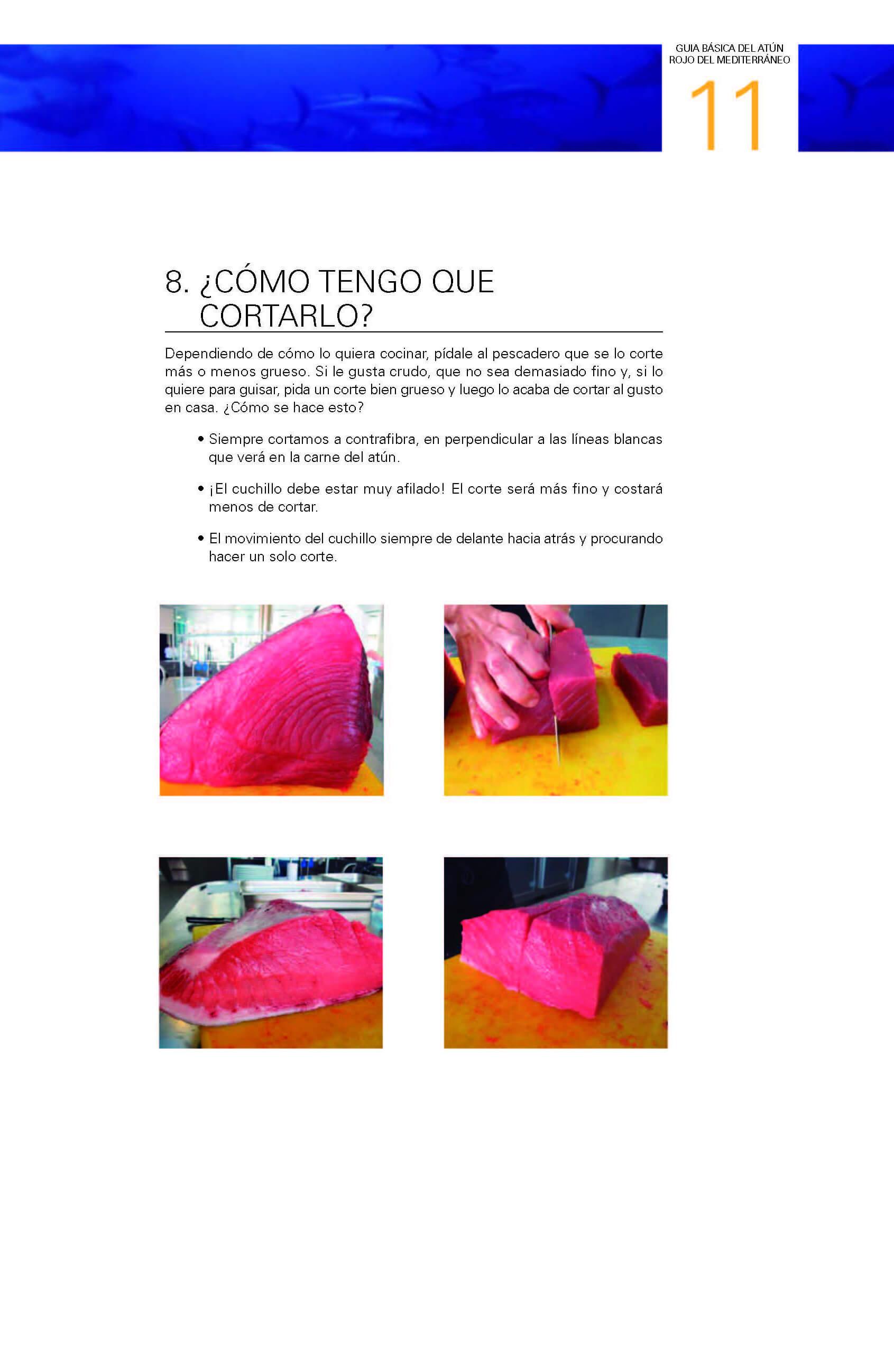 guia_basica_es_extracto_2